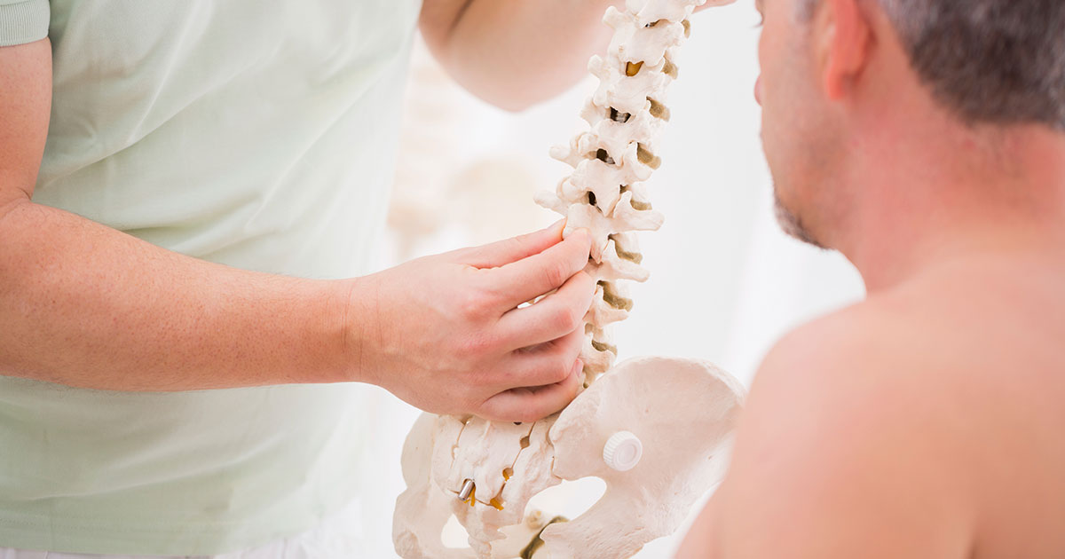 Chiropractor is showing a patient an anatomy model of the spine